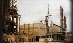 شركة الاسمدة: خطة لانتاج 630 الف طن العام الجاري