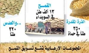 لنقص المازوت والأسمدة.. تراجع إنتاج القمح من المساحات المروية