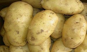 وقف السماح باستيراد البطاطا