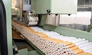 مؤسسة التبغ تبرر تراجع تنفيذ خططها: 42% لكمية الانتاج و89% للمبيعات