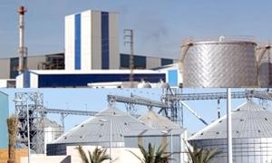 المطالبة بقرض 300 مليون لإكمال مشروع توسع الصناعات المعدنية في اللاذقية