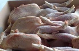 ارتفاع مستوردات سورية من  اللحم الأبيض خلال أيلول..وأكثر من 1300 طن من  الفروج الإيراني