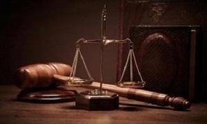 نحو 150 دعوى لتصفية الشراكة.. المحاكم التجارية تنظر في 200 دعوى إفلاس