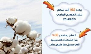الحكومة توافق على الاستمرار بتأمين مستلزمات الإنتاج لمحصول القطن للعام الحالي