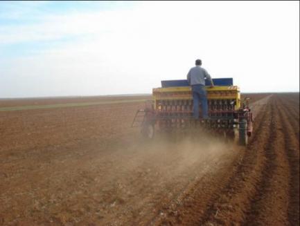 توزيع 10 آلاف طن من بذار القمح والشعيربأسعار رخيصة في إدلب