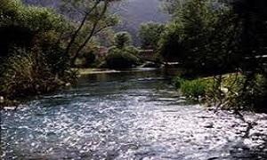 مدير مؤسسة مياه دمشق: مقبلون على شح واضح بالمياه العام الجاري