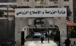 وزارة الزراعة تنقل المعرض الزراعي الدولي سياتكس 2013 إلى قلعة دمشق