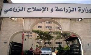 زراعة ريف دمشق تضبظ شحنات بذار مخالفة للمواصفات
