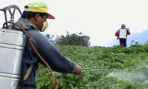 210 ملايين ليرة لتأمين مبيدات الاحتياج العام