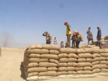 مؤسسة الحبوب: ألفا طن من الأقماح إلى حلب لتعزيز مخزونها الاستراتيجي