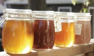 ضبط 100 كيلو غرام من العسل المغشوش في مستودع بريف دمشق