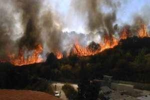 في طرطوس..24 حريقاً زراعياً وحراجياً تلتهم مئات الدونمات