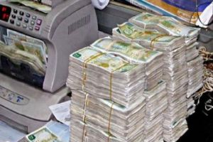تأسيس شركة ضمان مخاطر القروض برأسمال 5 مليارات ليرة