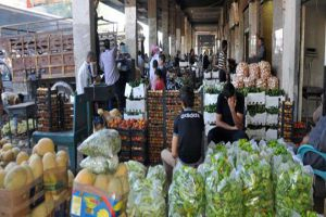 غرف الزراعة: إنشاء وحدات تسويق جماعي للمنتجات لتخفيض التكاليف