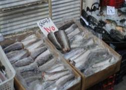 وسط تحذيريات من الأسماك المقطوعة الرأس..دخول أسماك فاسدة من لبنان إلى سورية