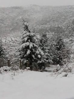 استمرار تأثير المنخفض الجوي على سورية.. وثلوج على المرتفعات