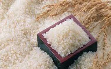 الاقتصاد تنوي إجراء عقود شراء مباشر للسكر والرز من دول صديقة