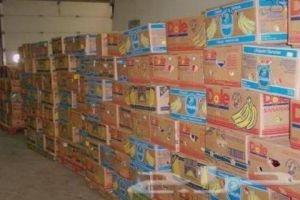 من أين جاء الموز المهرب؟!.. ضبط 2,5 طن من الموز مجهول الهوية في اللاذقية