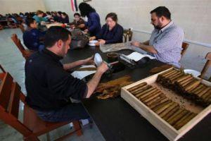 مؤسسة التبغ توقف مصنع السيجار بعد العجز عن تسويق إنتاجه