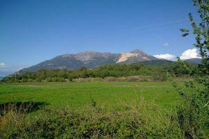 وزارة الزراعة تحدد أجور السياحة البيئية في الغابات
