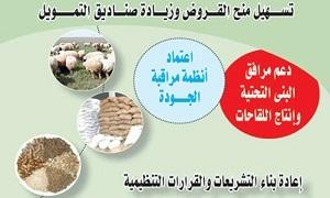 أهم خطوات وزارة الزراعة لتحسين واقع الثروة الحيوانية