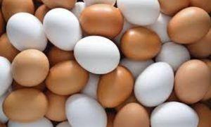 سعر صحن البيض يرتفع مجدداً في أسواق دمشق وريفها مسجلاً أكثر من ألف ليرة