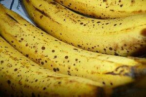 وزارة التجارة الداخلية  تطرح الموز في صالاتها بنصف سعر السوق.. و2 كغ حصة كل مواطن شهرياً