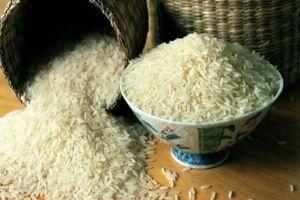 سورية تبدأ بزراعة وإنتاج الأرز الهوائي