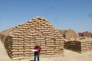 في سورية..تراجع مؤشر الأمن الغذائي والاكتفاء الذاتي من الحبوب بسبب الحرب