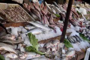 أسعارها المستورد بـ1800 ليرة والمحلـي 5000 ليرة...أسماك مجهولة المصدر تباع في أسواقنا!