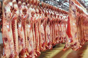 على ذمة جمعية اللحوم : انخفاض أسعار اللحوم الحمراء لأكثر من 35%