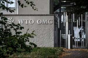 صندوق النقد الدولي لا بد من معالجة أعباء الديون المتزايدة