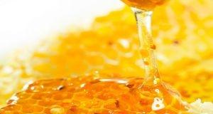 السماح باستيراد العسل لمدة عامل كامل