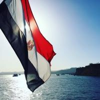 مصر تشتري قمح بكميات مفتوحة من 15 دولة في العالم
