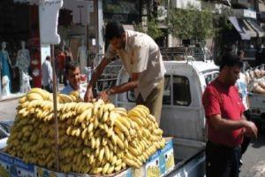 مستوردات السورية للتجارة من الموز تباع في سوق الهال!