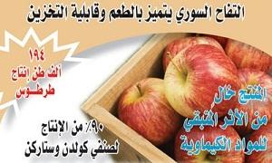 سورية بالمرتبة 33 عالمياً والثالثة عربياً في إنتاج التفاح