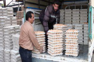 اسعار البيض ترتفع 50% في الأسواق السورية دون أي مبرر!