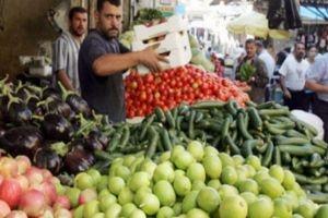 غرف الزراعة: أسعار الخضار حالياً منطقية للمستهلك والمزارع