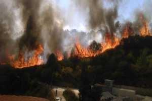 قائد فوج إطفاء طرطوس: الشكوك تدور حول تجار الحطب بافتعال الحرائق