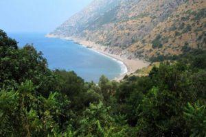 السياحة تطرح 7 مواقع لاستثمارها كشواطئ مفتوحة لذوي الدخل المحدود