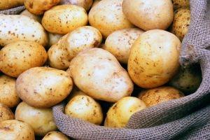 غرف الزراعة: البطاطا المحلية (بتكفي وبتوفي)  ويجب عدم استيرادها من لبنان