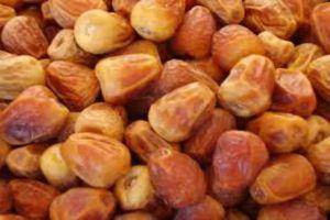 الحجر الصحي النباتي يرفض 28 طناً من التمور المستوردة الإماراتية.. لهذا السبب!