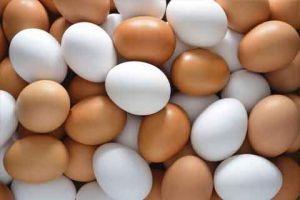 بيض مهرب و فاسد بالأسواق السورية!!..وانخفاض الإقبال على اللحوم ٥٠ بالمئة