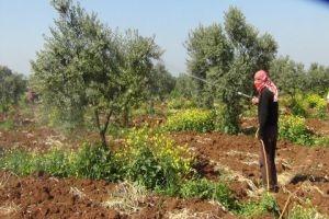 غرف الزراعة تحذر: رفع سعر المحروقات أثر على الفلاح والإنتاج الزراعي