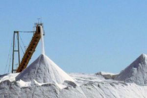 مؤسسة حكومية تطالب الاقتصاد بإيقاف استيراد الملح