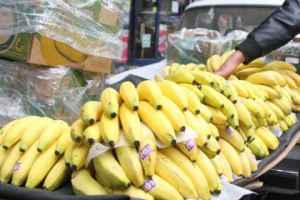الموز المهرب يملئ الأسواق