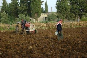 رغم وجود 14 شركة تأمين محلية..التأمين الزراعي غائب في سورية!