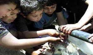 سورية تعاني عجزاً مائياً يقدر بمليار ونصف مليار متر مكعب سنوياً