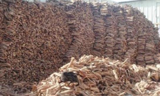 التدفئة على الحطب تكلف الأسرة السورية 900 ليرة يومياً