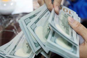مدير تموين اللاذقية يؤكد: ارتفاع سعر الدولار هو أمر آني